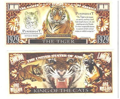 Dollar  Tiger, THE TIGER, King of the Cats