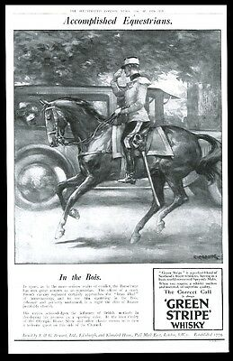 1924 Green Stripe Scotch whisky French cavalry horse art BIG UK vintage print ad