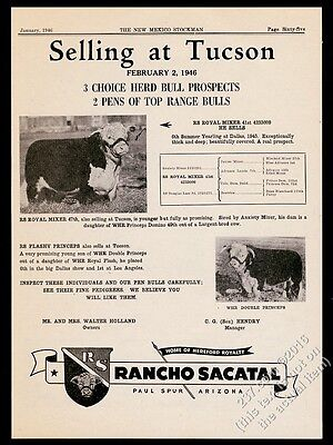 1946 Hereford cow bull sale 2 photo Rancho Sacatal Paul Spur Arizona print ad