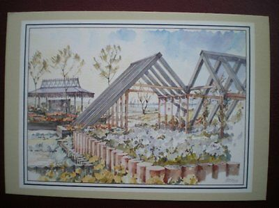 Postcard Rp Royal Mail The Rose Garden Post Office At Garden Festival Liverpool