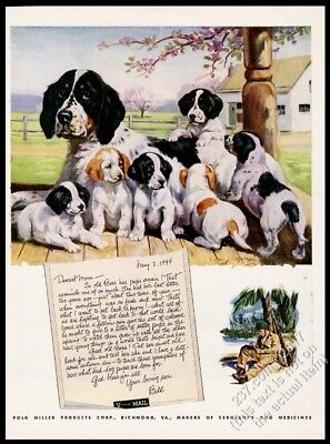 1944 English Setter & puppy dog Edwin Megargee art Polk Miller vintage print ad