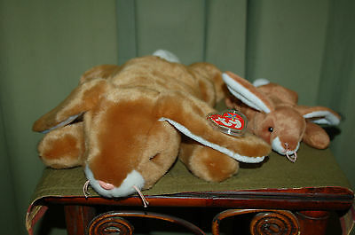 EARS the Brown Bunny Rabbit  - Ty Beanie Baby & BUDDY - MWMT - Fast Shipping