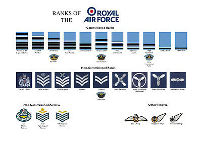 Large A3 Ranks of the Royal Air Force RAF Poster ( rank structure New British