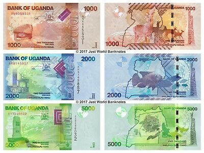 Uganda 1000 + 2000 + 5000 Shillings 2010-2015 Set of 3 Banknotes 3 PCS UNC
