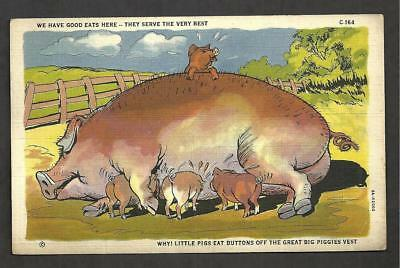 M667 - Antique Postcard, We Have Good Eats Here - They Serve The Very Best ©