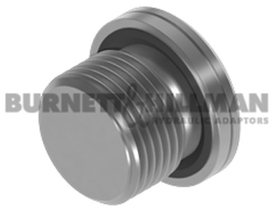 Burnett & Hillman METRIC Socket Headed Plug WITH 3869 SEAL Hydraulic Fitting