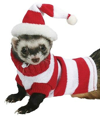 Marshall Pet Ferret Tiny Dog Jacket Hat & Sweater Set 3-5 lbs Red & White Stripe