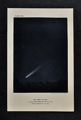 1897 Astronomy Print - Comet of 1882 from Streatham by Key - Lithograph Star Map