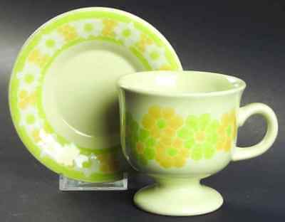 Franciscan PICNIC Cup & Saucer 140015