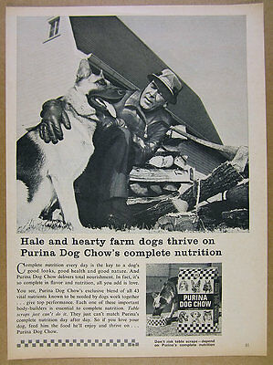 1964 German Shepherd farm dog photo Purina Dog Chow food vintage print Ad