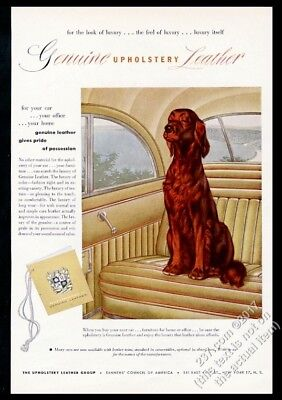 1952 Irish Setter art Upholstery Leather Group vintage print ad