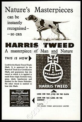 1954 Harris Tweed fashion fabric pointer dog art vintage print ad