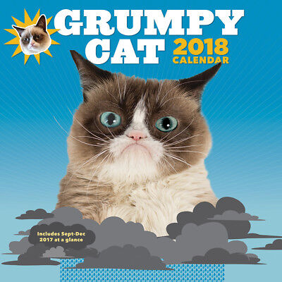 NEW 2018 Grumpy Cat Wall Calendar - 12x12 Ready To Use In 2017 Sept - Dec