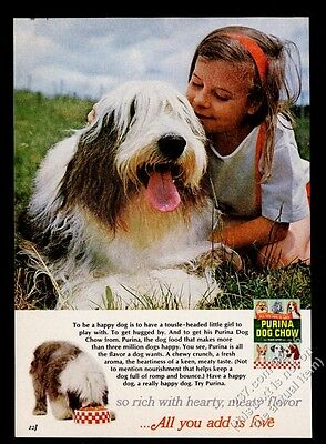 1967 Old English Sheepdog and girl great photo Purina Dog Chow vintage print ad