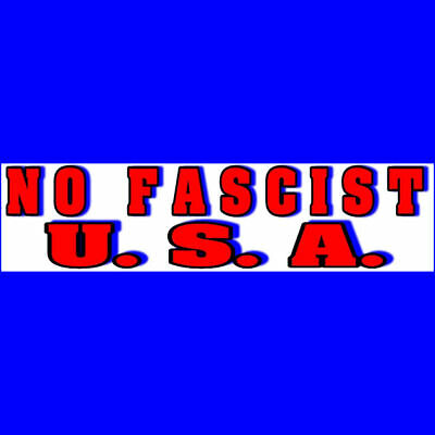 NO FASCIST USA Bumper Sticker  DONALD TRUMP  $2.99  BUY 2 GET 1 FREE