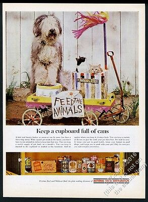 1963 Old English Sheepdog & cats photo National Steel vintage print ad