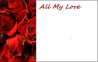 Florist Red Rose Message Cards - All My Love  x 50 - Valentine Anniversary