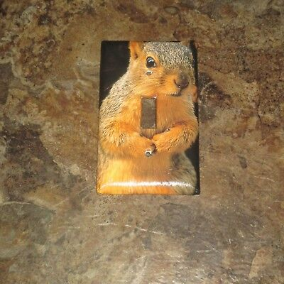 CLASSIC RED SQUIRREL Animal Light Switch Cover Plate #2