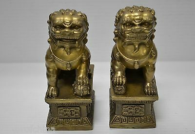 "Pair Chinese Brass Foo Dog Guardian Lion Statue Figurine Feng Shui 6""H May4-05"