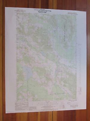 Boyne Falls Michigan 1986 Original Vintage USGS Topo Map