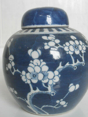 Antique Chinese Large Porcelain Blue And White Prunus Ginger Jar Blossom Lidded