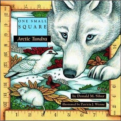 Arctic Tundra (One Small Square) - Paperback NEW Silver, Donald  1997-10-01