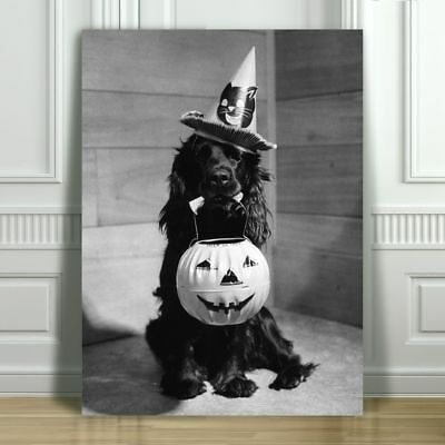 CUTE VINTAGE Black & White Halloween Dog - CANVAS ART PRINT POSTER - 24x16""