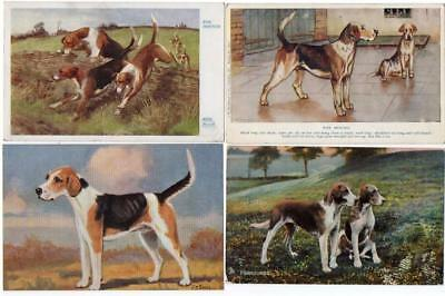 Four   Early  FOXHOUNDS    DOG   Postcards