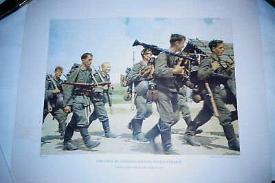 WW2 German Original Colour Press Release PR Print 8