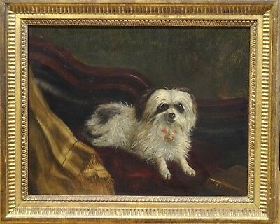 Fine 19th Century English Portrait of A Small Terrier Dog Antique Oil Painting