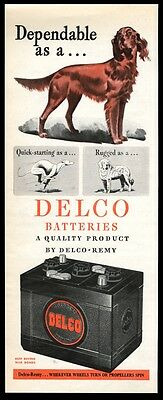 1945 Irish Setter illustrated Delco Remy car battery vintage print ad