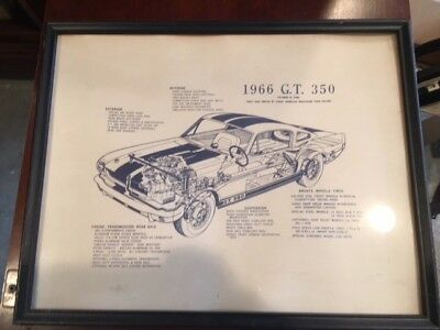 Shelby Mustang 1966 cut-away view poster