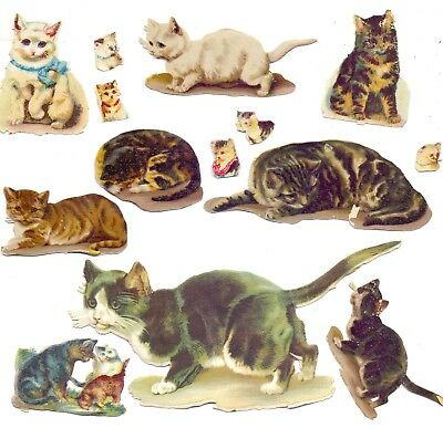 Nice Pack of Original Victorian,Scraps Cats        (SC 6)