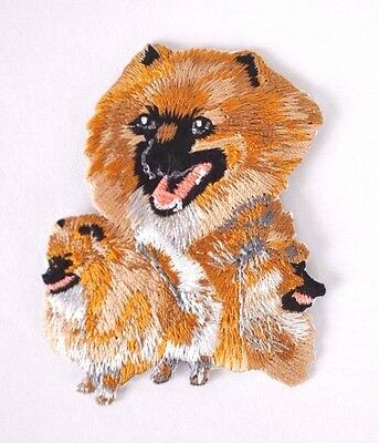 ***embroidered*** Iron On Patch Dog Detailed Quality Pomeranian *free Shipping*