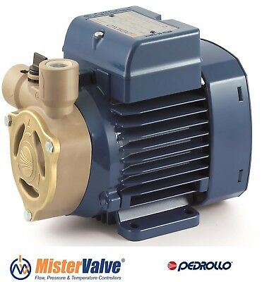Electric Peripheral Water PK Pump PKm65 0,7Hp Brass impeller 240V Pedrollo by Pedrollo