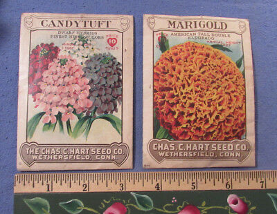 2 Antique 1918 Seed Packets Full Contents Chas. Hart Seed Co. Wethersfield Ct