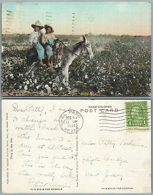 Black Americana Boys On The Donkey 1934 Vintage Postcard
