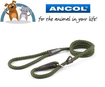Ancol Green Strong Nylon Slip Rope Dog Lead Collar Sizes In Dropdown GREEN
