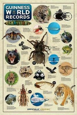 Guinness World Records : Creatures - Maxi Poster 61cm x 91.5cm new and sealed