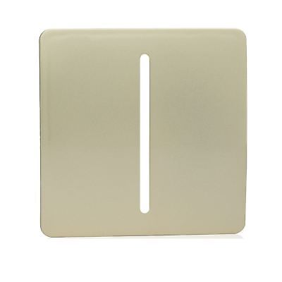 Trendi SPARE FACEPLATE For 1 Gang 1Way 10 Amp Rocker Light Switch Champagne Gold