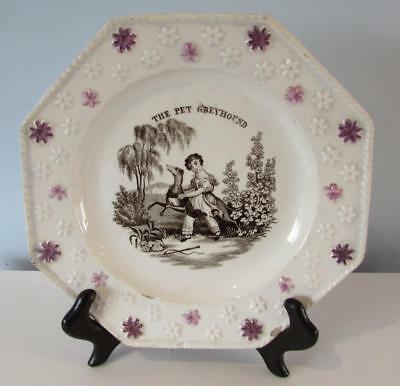 "Antique Early 19thC Davenport Pearlware Child's Plate - "" The Pet Greyhound"""