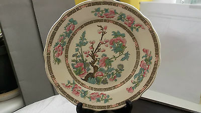 Lord Nelson Ware Cake / Small Dinner  Plate In Indian Tree Pattern