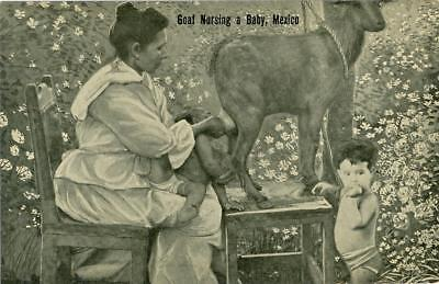 Mexico c.1910 Goat nursing a baby  H. H. Stratton unused postcard