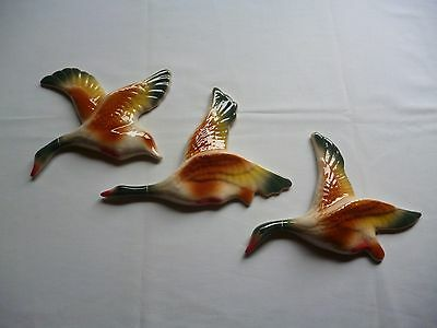 Flying Wall Hanging Ducks . Retro Must Have.