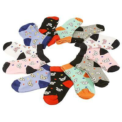 12 Pairs Cute Teddy Bear Casual Sport Long Crew Socks Set Kids Unisex Ages 4-6