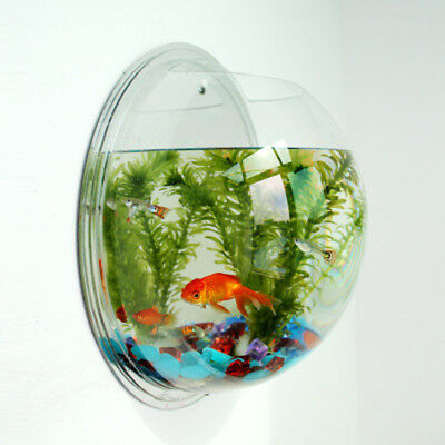 Wall Decor Hot Tank Plant Bubble Aquarium Hanging Hanger Fish Bowl Home Acrylic