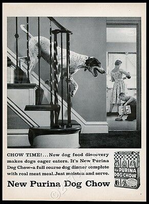 1957 pointer photo Purina Dog Chow vintage print ad