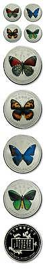 China Set of 4 Colored Butterfly Medallions Proof 2009 Series II