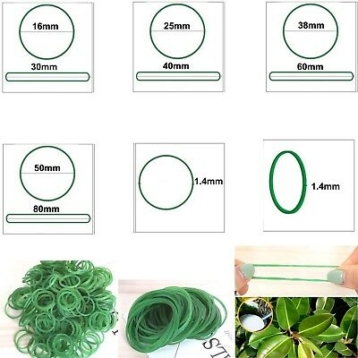 Green Natural Rubber Strong Elastic Bands 1.4mm Width Eco Quality Business Home
