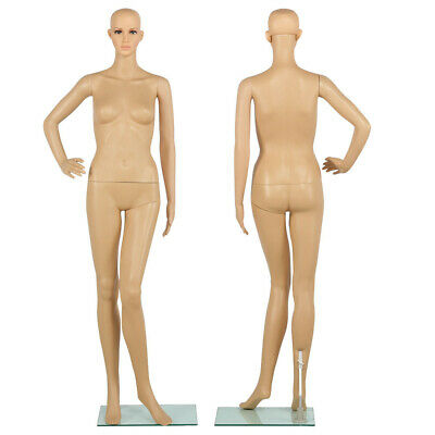 Full Body Dummy Mannequin Retail Dressmaker Female Lady Shop Window Display